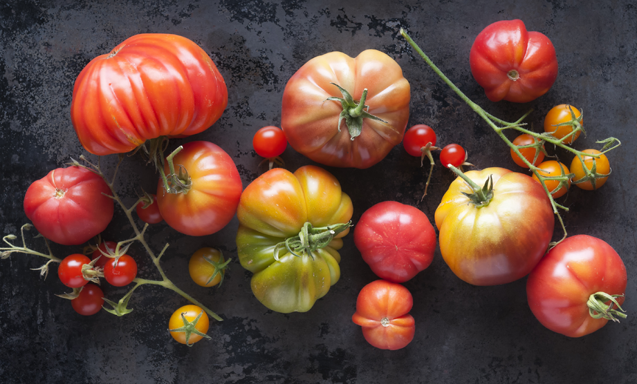Whats in Season: Tomatoes