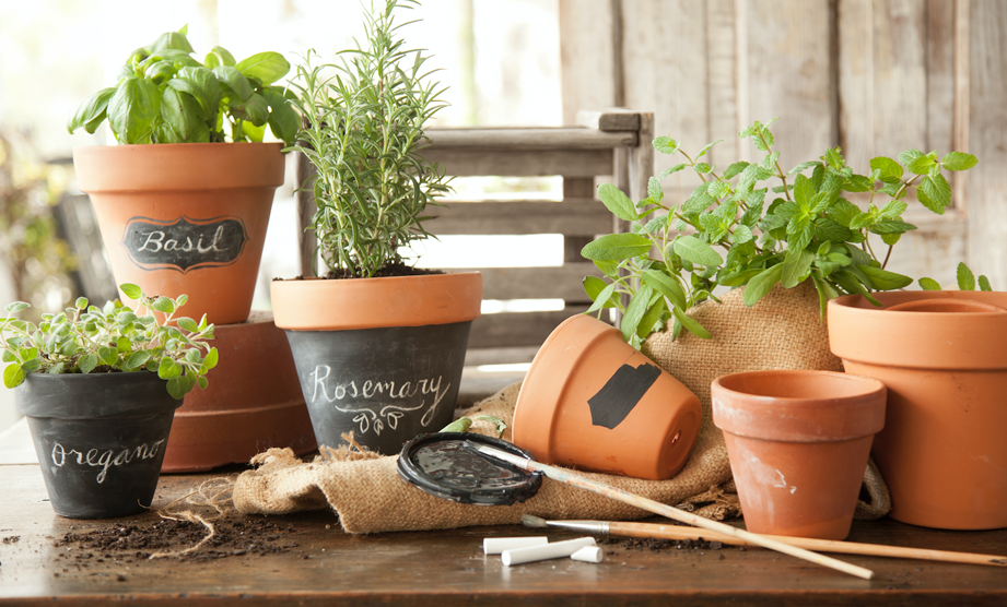 How-To: Make Chalkboard Herb Planters