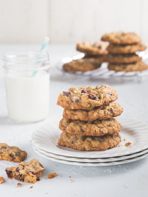 Chocolate Cranberry Pecan Oat Cookies Thumbnail