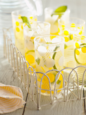 Minted Lemon and Limeade Thumbnail